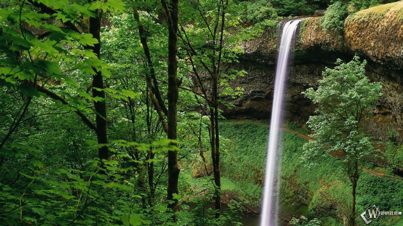 Обои водопад в лесу на рабочий стол с
