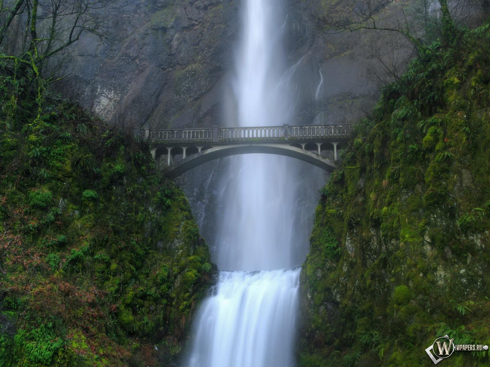 Водопад у моста зелень мост водопад