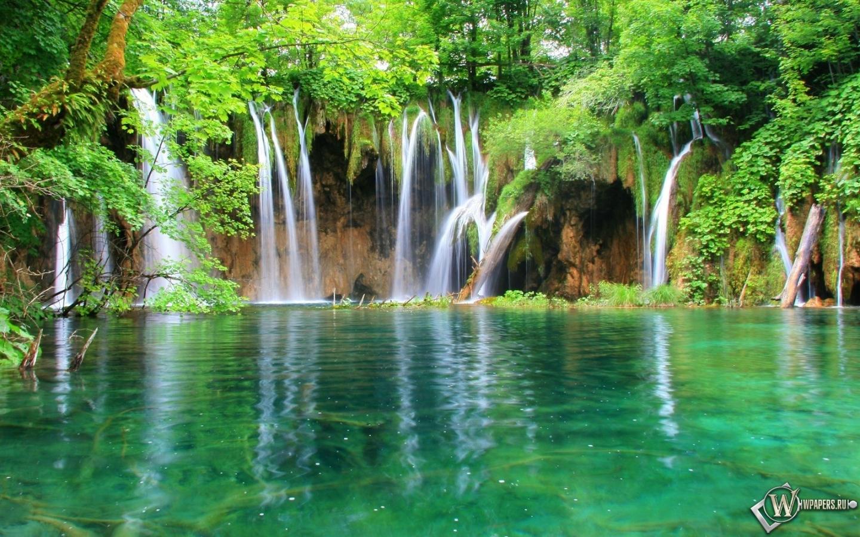 Обои водопад в лесу вода лес водопад