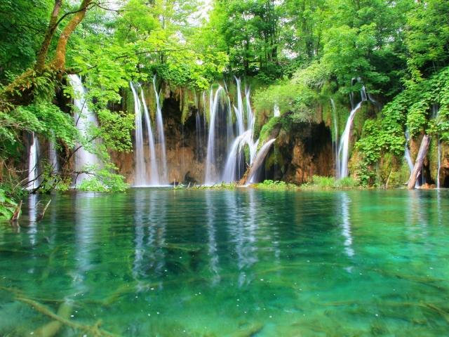 Вода лес водопад водопады