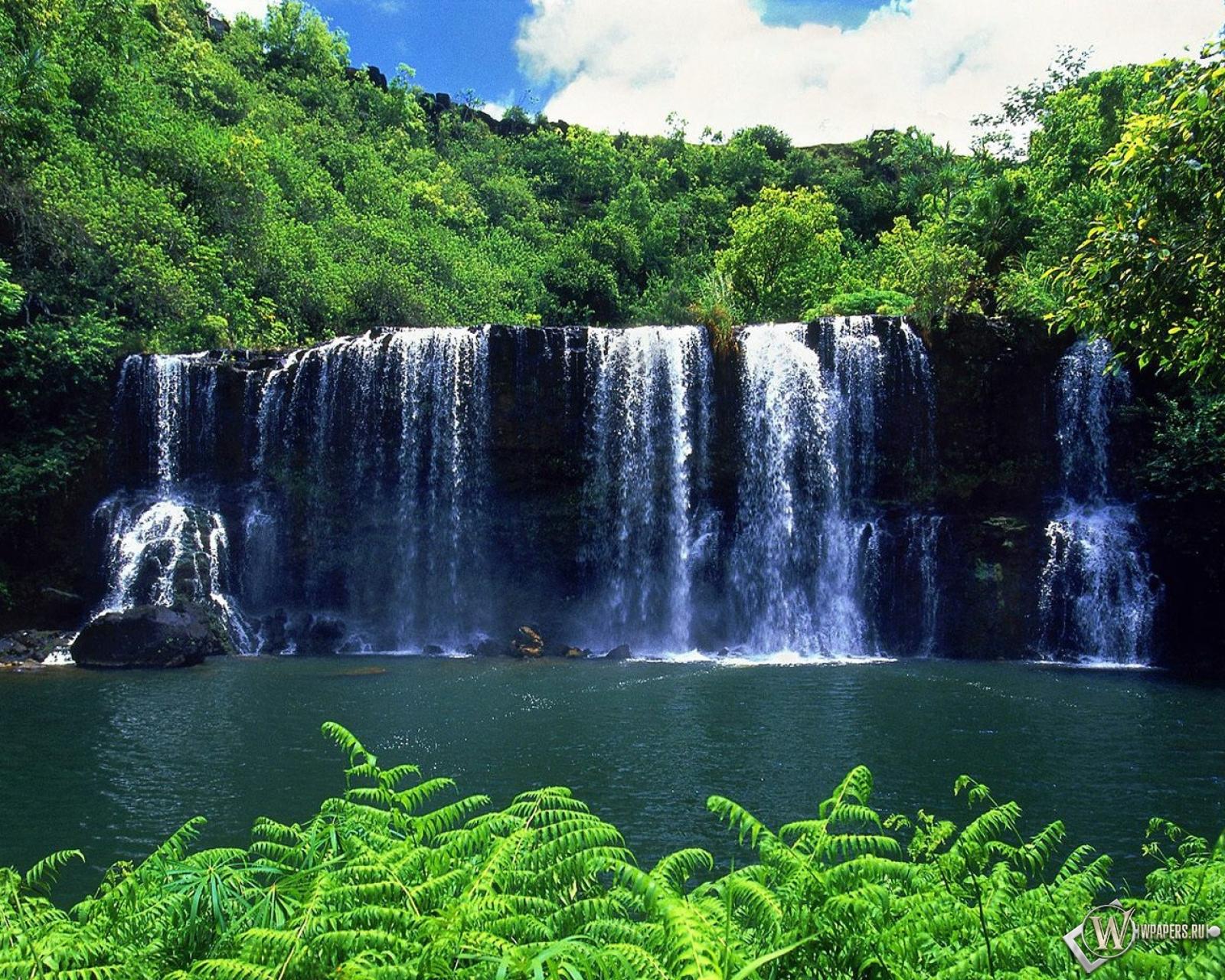 Водопад зелень вода лес водопад