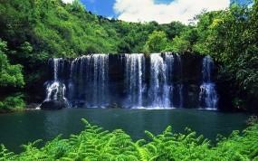 Обои Тропический Водопад : Зелень, Вода, Лес, Водопад, Зелёный, Тропики, Падение, Водопады