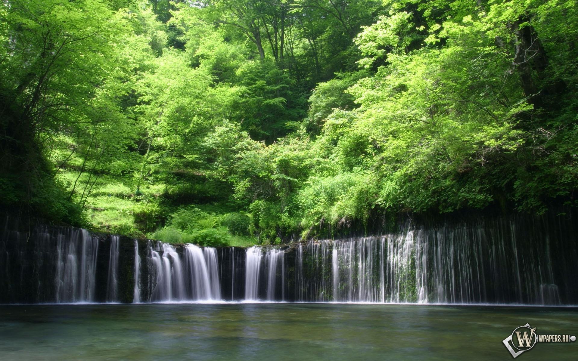 Деревья над водопадом 1920x1200