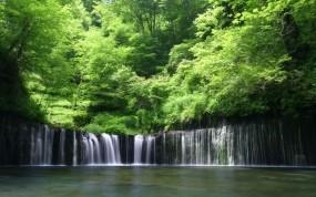 Обои Деревья над водопадом: Зелень, Вода, Лес, Деревья, Водопад, Водопады