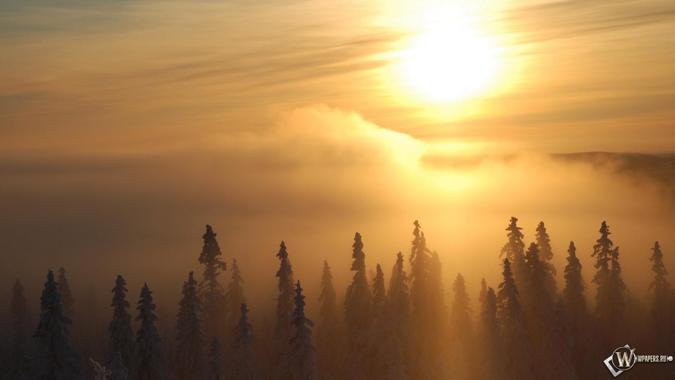 Зимний рассвет 1366x768
