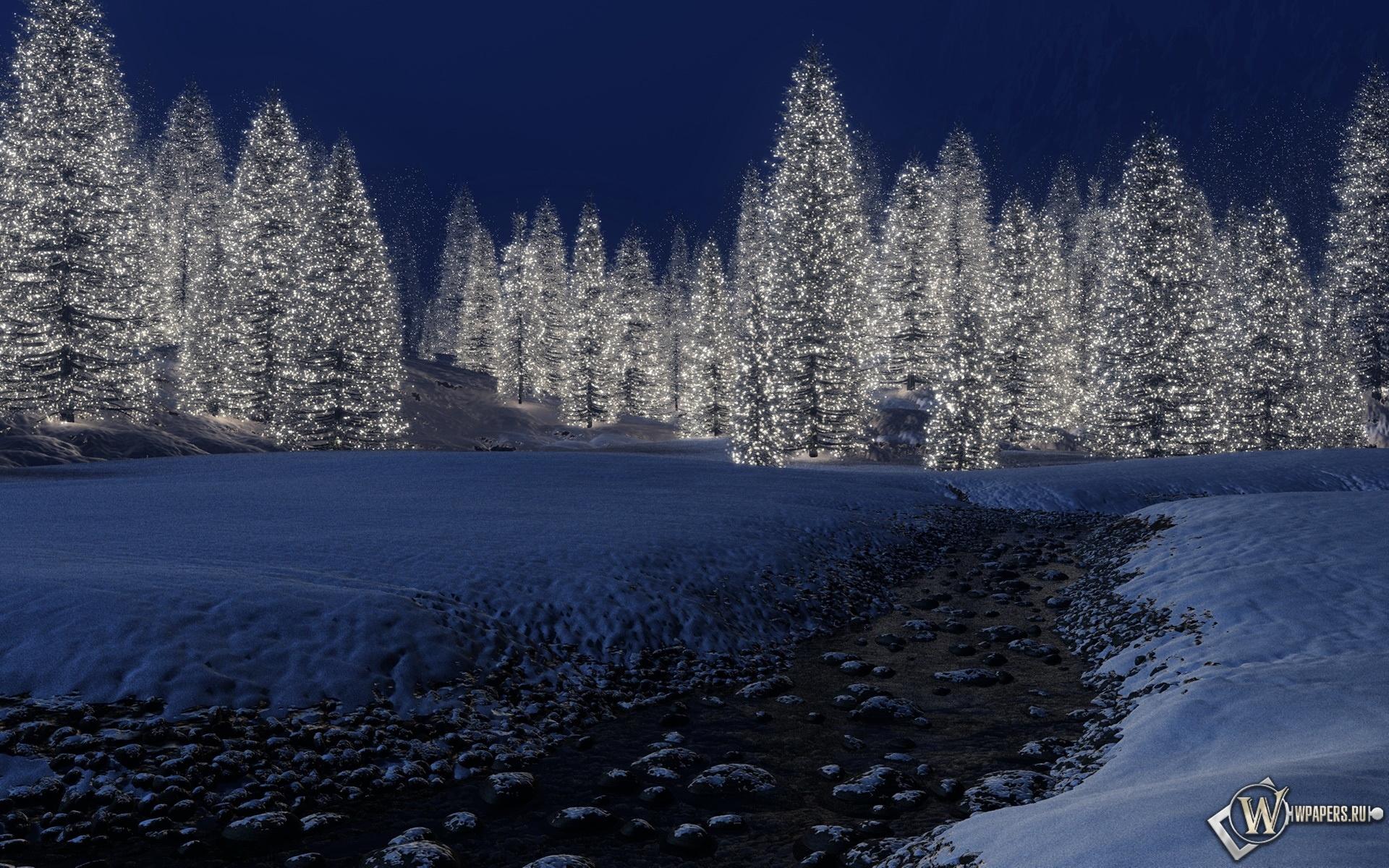 Светящийся лес 1920x1200