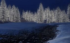 Обои Светящийся лес: Фонари, Зима, Лес, Деревья, Лампочки, Зима