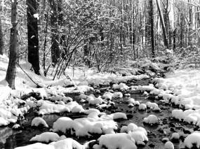 Обои Холодный ручей: Зима, Снег, Ручей, Зима