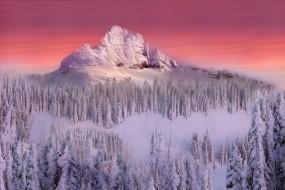Обои Зимняя гора: Зима, Снег, Деревья, Гора, Зима