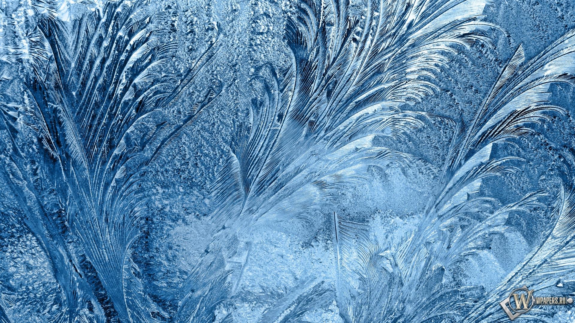 Узоры на стекле зима узоры мороз