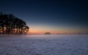 Обои Зима в Дании: Деревья, Туман, Небо, Зима
