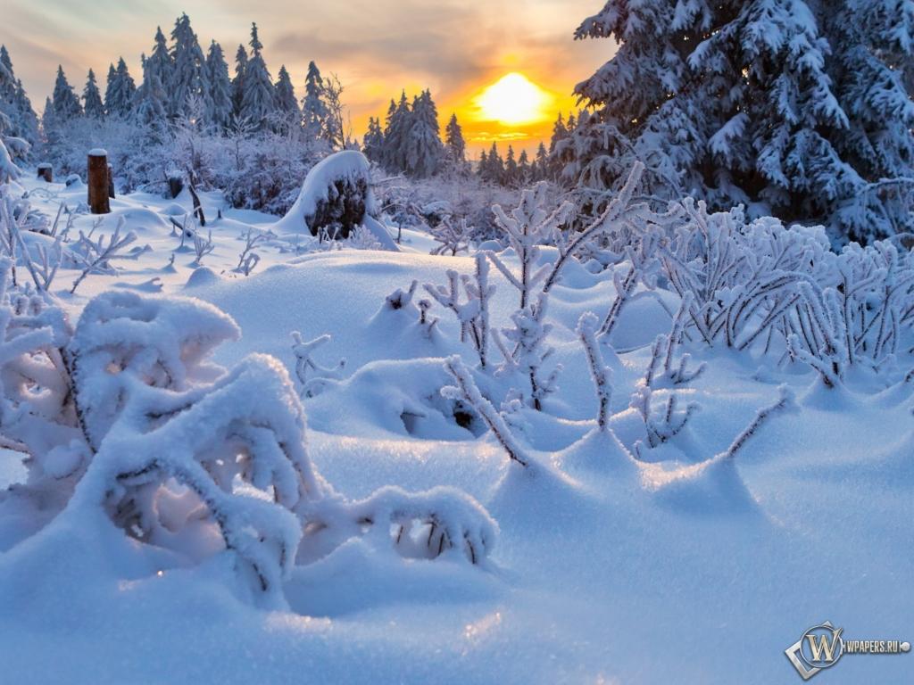 Обои зимний пейзаж зима снег солнце