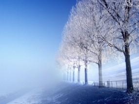 Обои Зимняя сказка: Зима, Лёд, Дорога, Иней, Зима