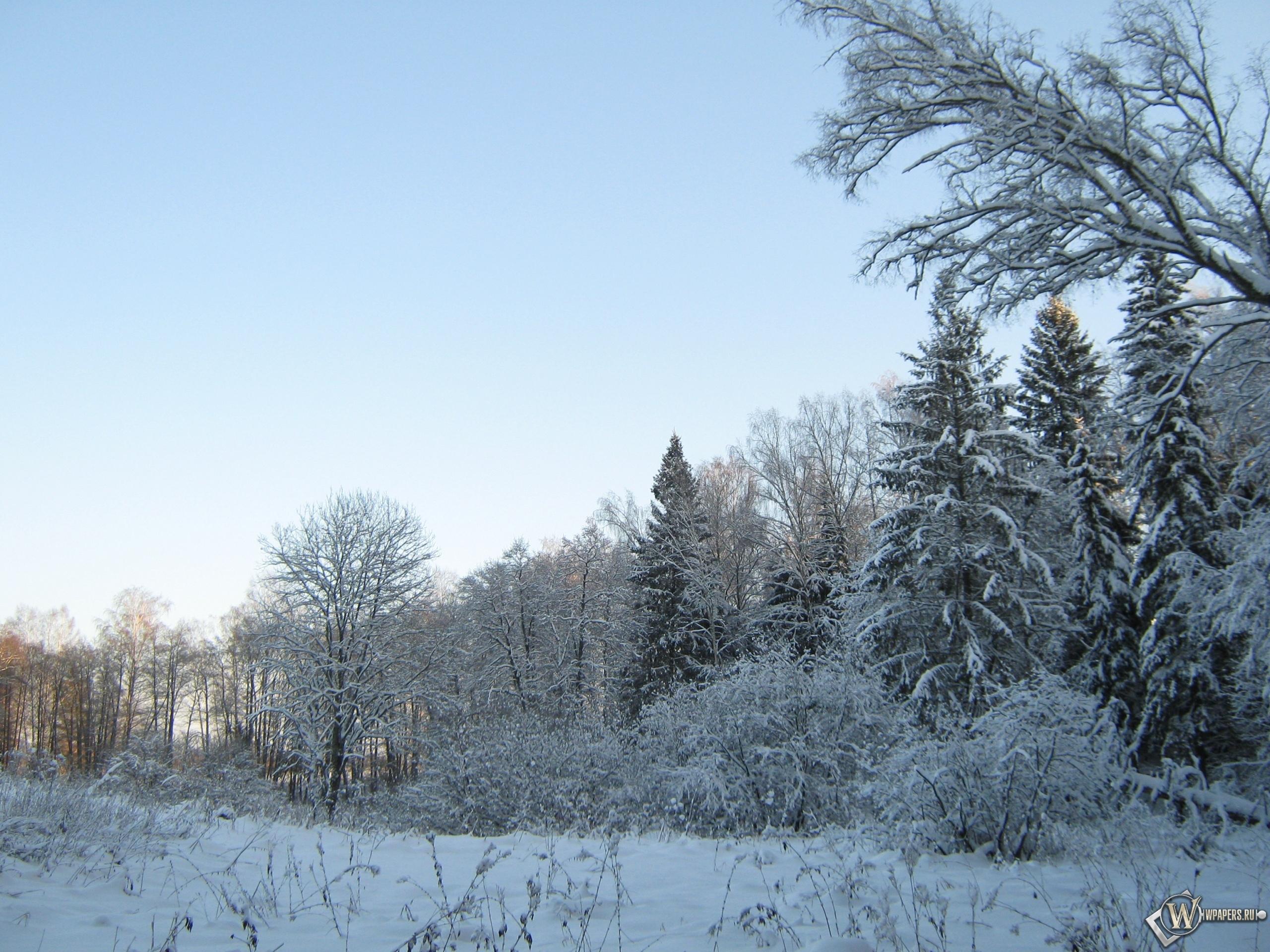 Красавица зима 2560x1920
