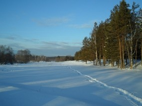Обои Зимний вечер: Зима, Снег, Деревья, Зима