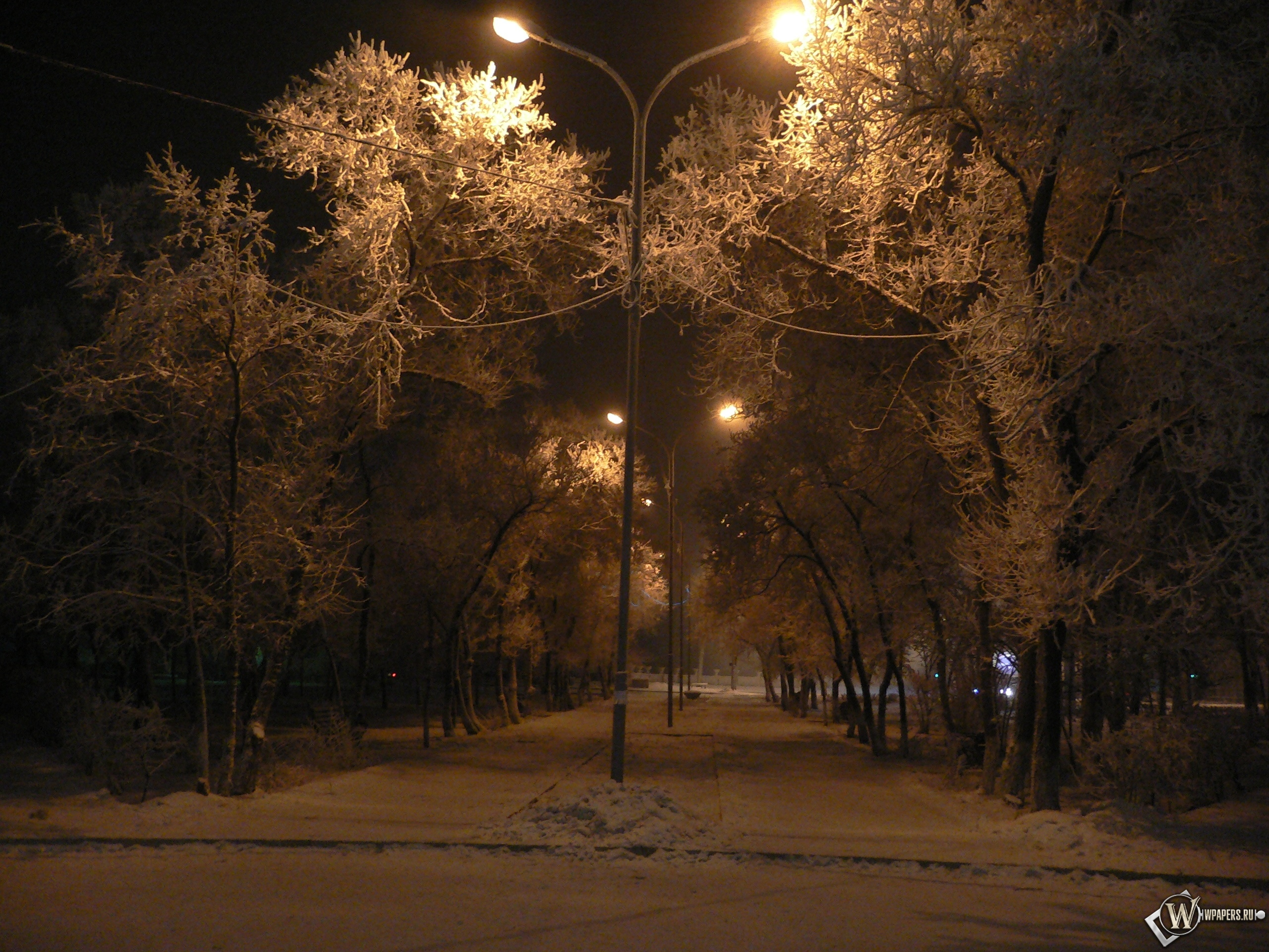 Зимняя аллея 2560x1920