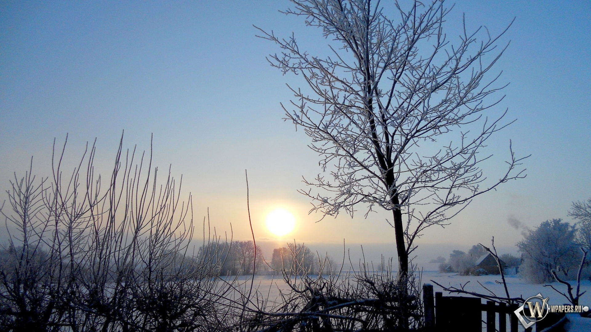 Обои зима зима снег солнце рассвет