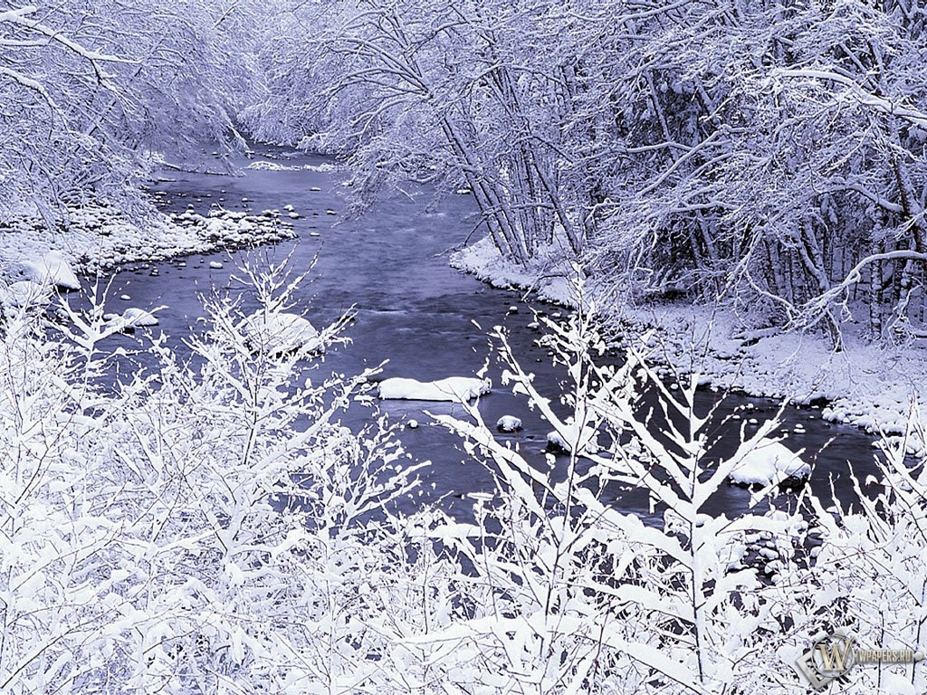 Проток зимней речк и 1024x768