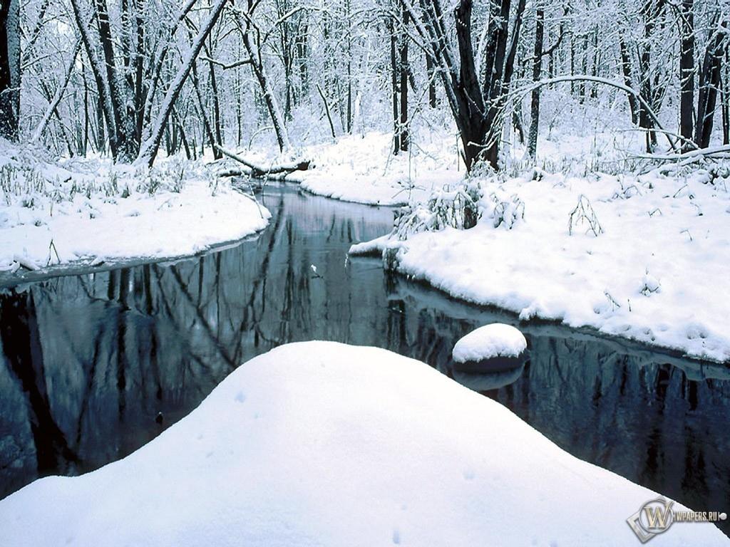 Зимний пруд в лесу 1024x768