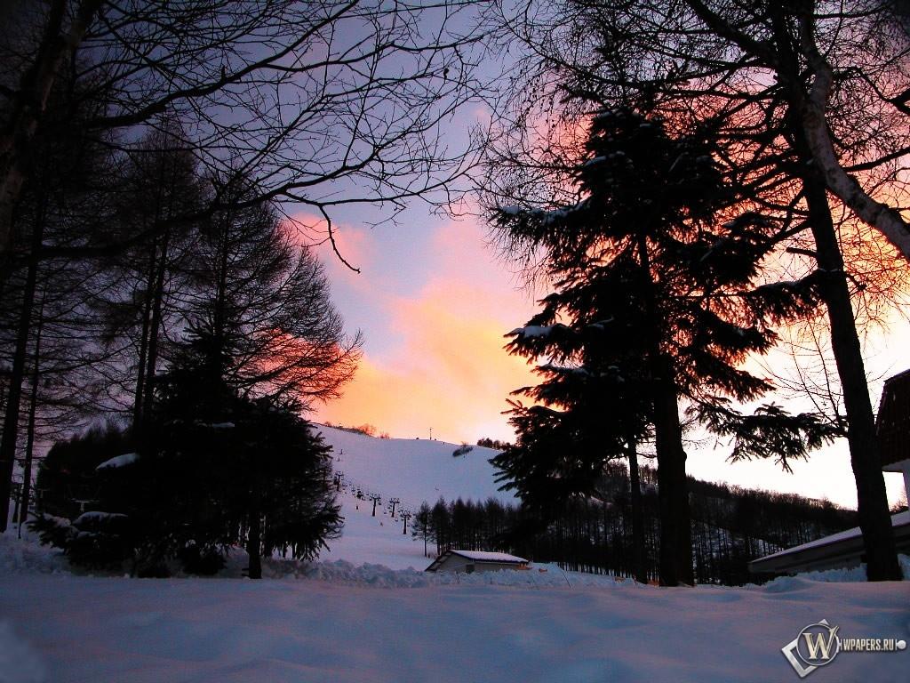 Просвет в зимнем лесу 1024x768