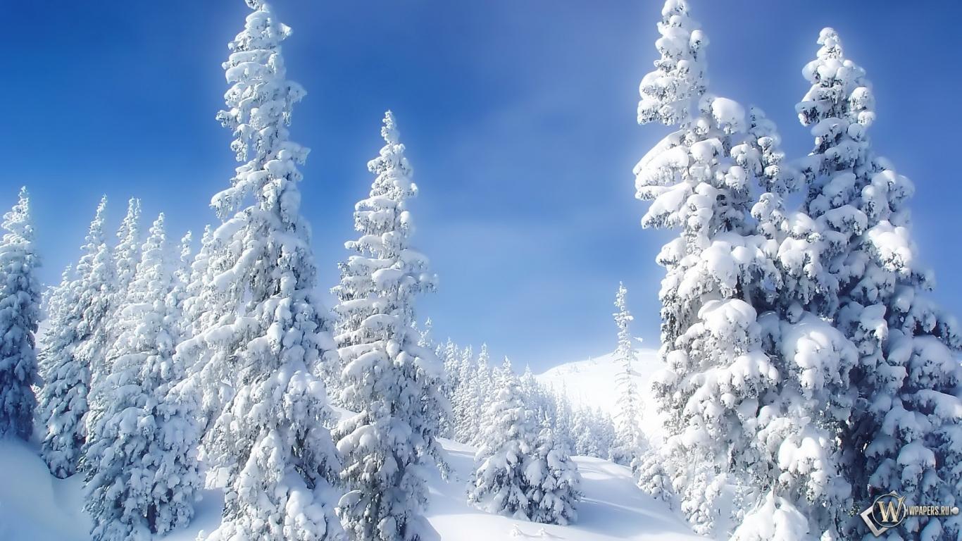 Картинки зима размер 1366 на 768