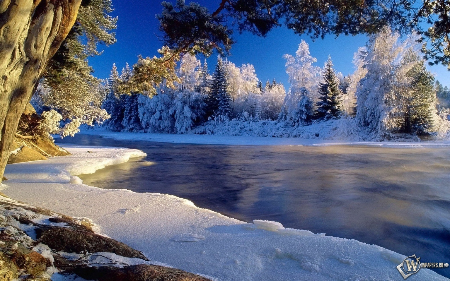 Зима лёд иней холод 1536x960 картинки