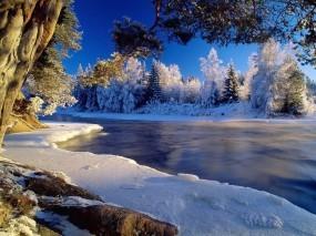 Обои Ледяная речка: Зима, Лёд, Иней, Холод, Зима