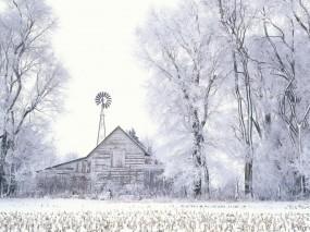 Обои Домик в лесу: Зима, Снег, Деревья, Домик, Природа