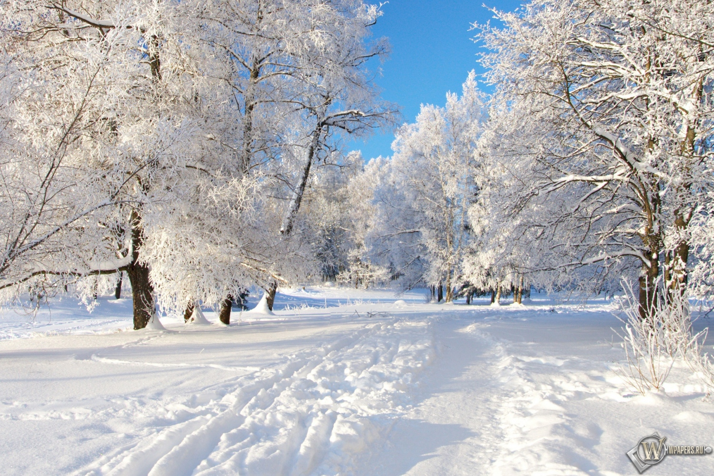 Снежная тропа 1500x1000