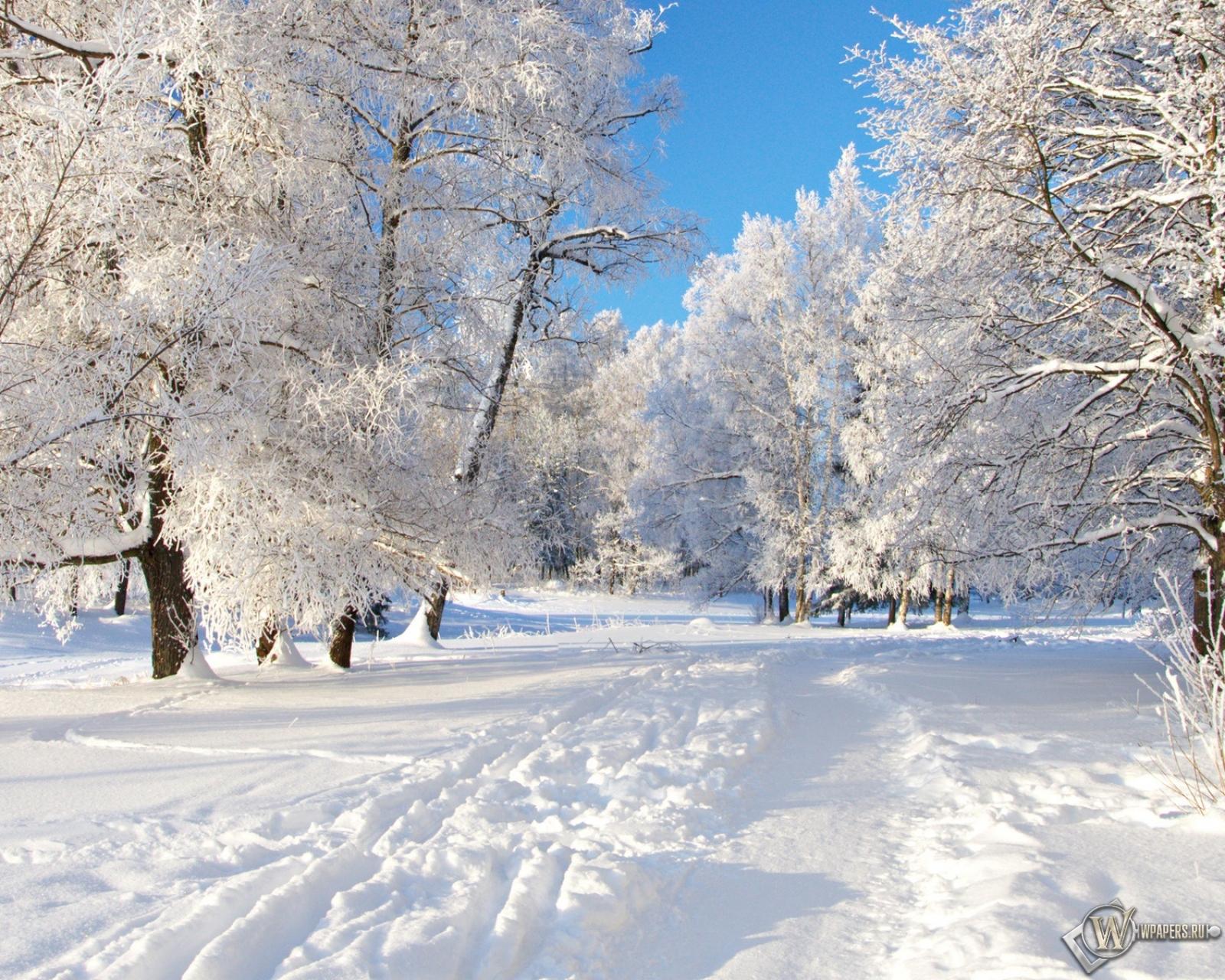 Обои снежная тропа на рабочий стол с