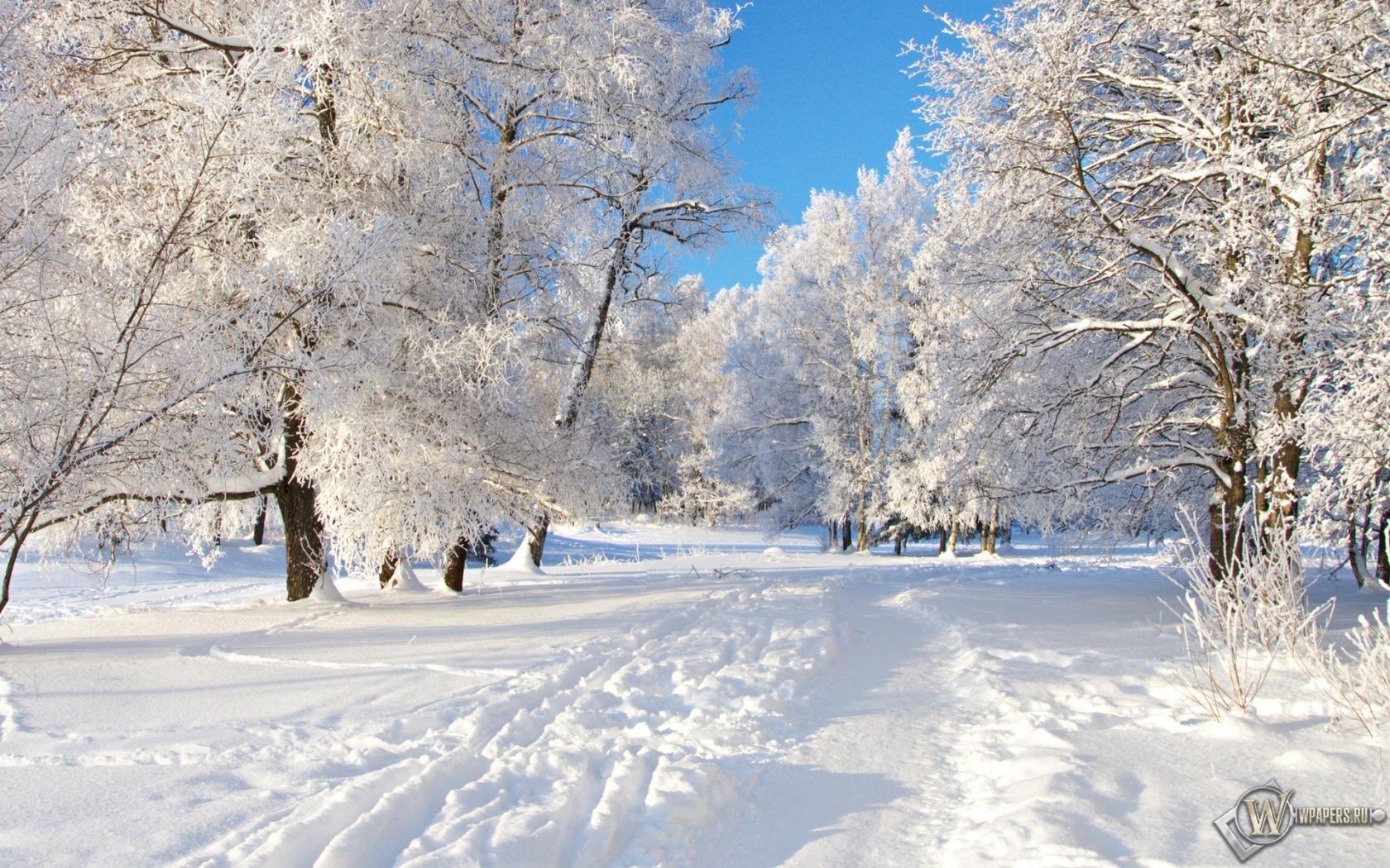 Снежная тропа 1680x1050