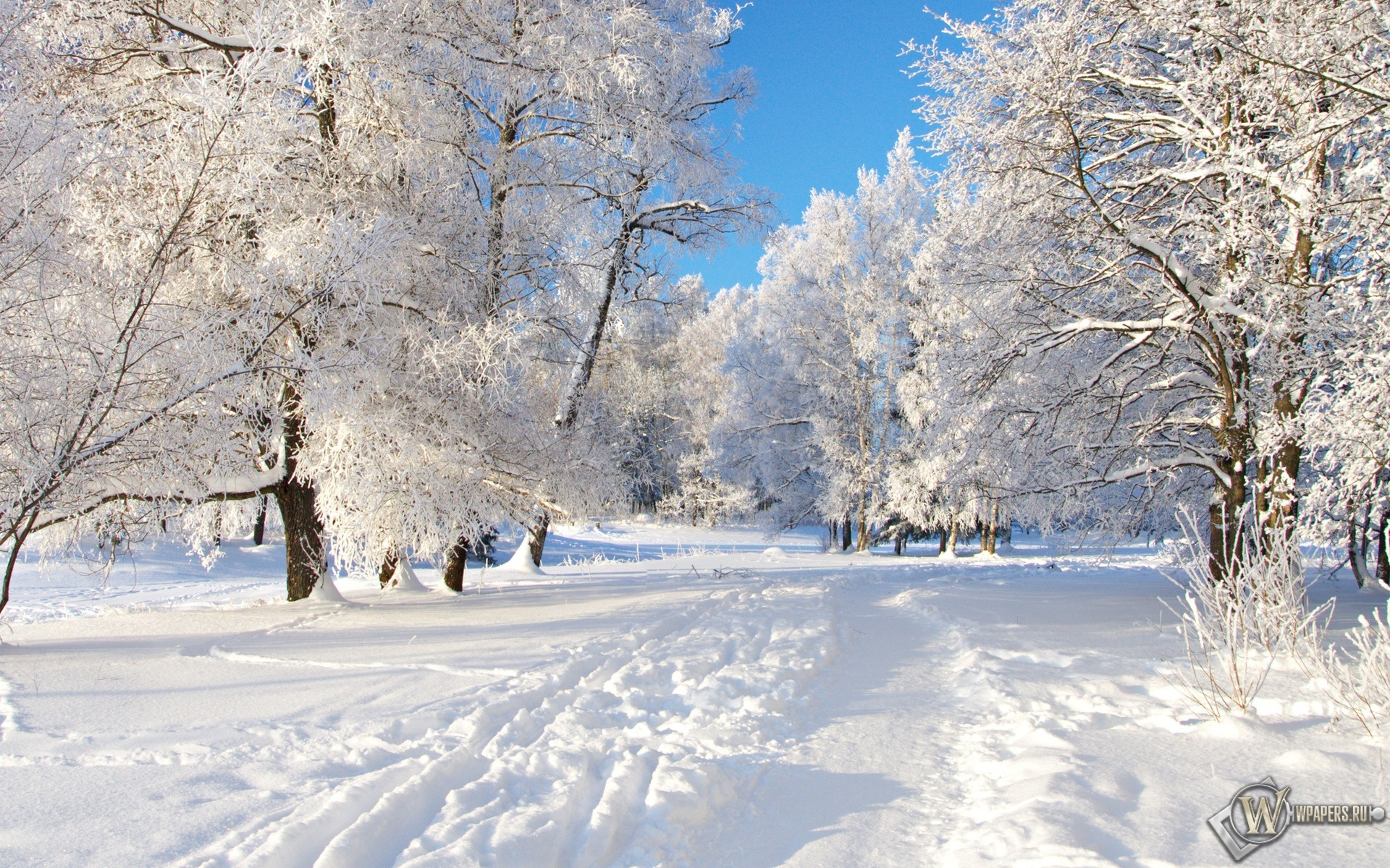 Снежная тропа 1920x1200