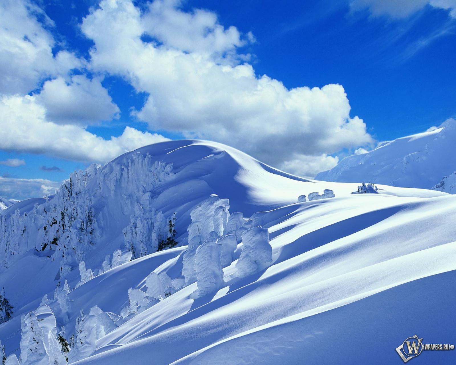 Зима горы снег деревья сугроб 1600x1280