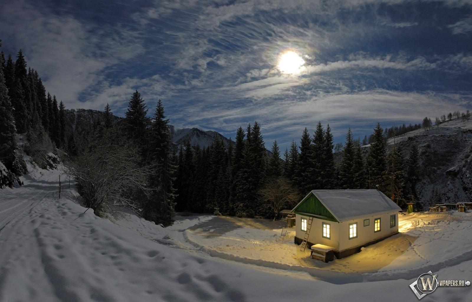 Фото в лесу зимой