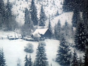 Обои Домик в зимнем лесу: Зима, Лес, Домик, Зима