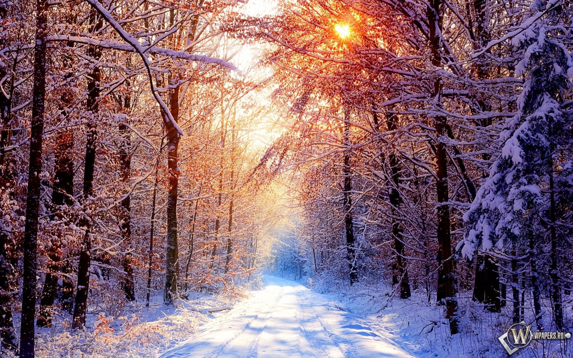 Обои глубокое молчание зима снег