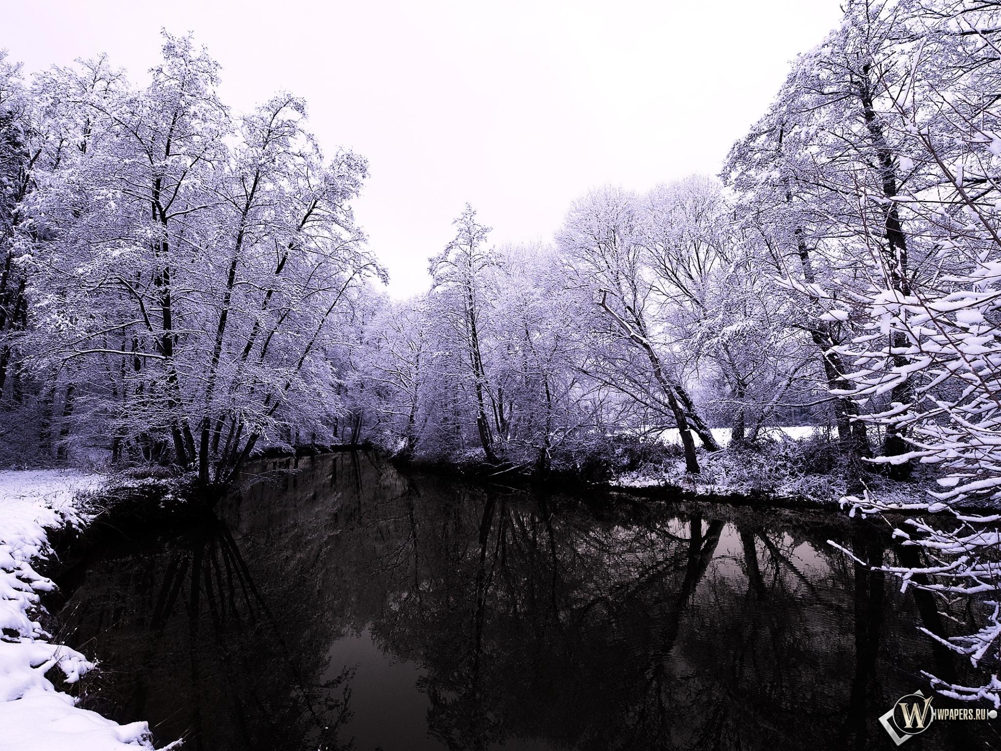 Зима снег деревья озеро небо ветки