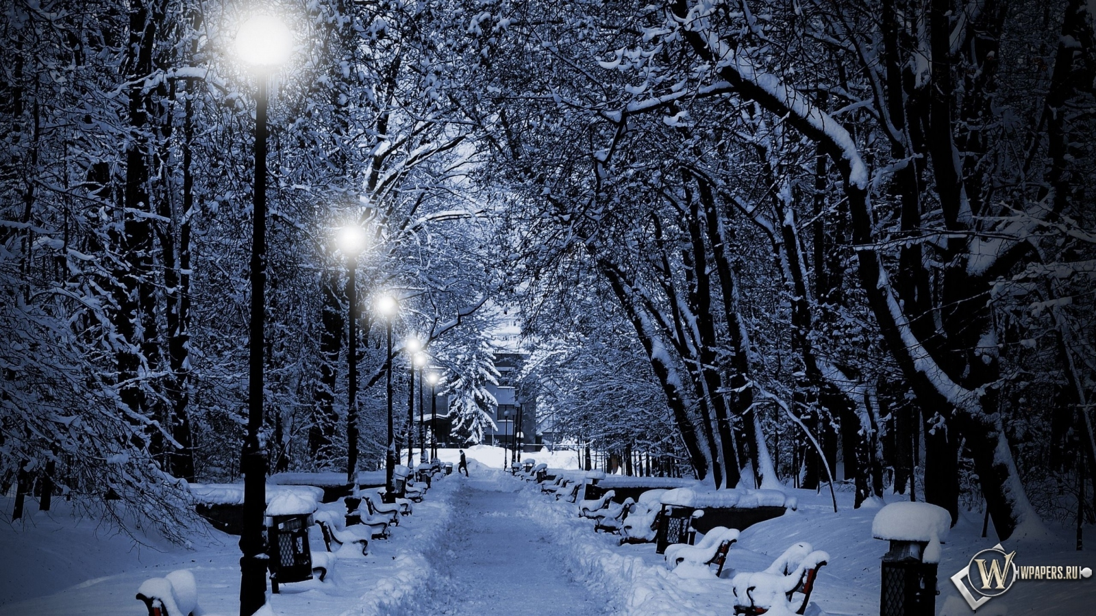Аллея зимой 1600x900