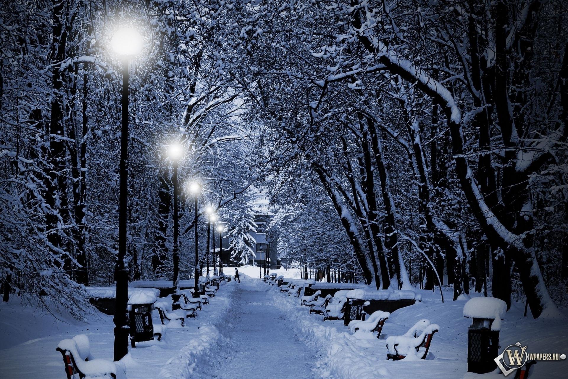 Аллея зимой 1920x1280
