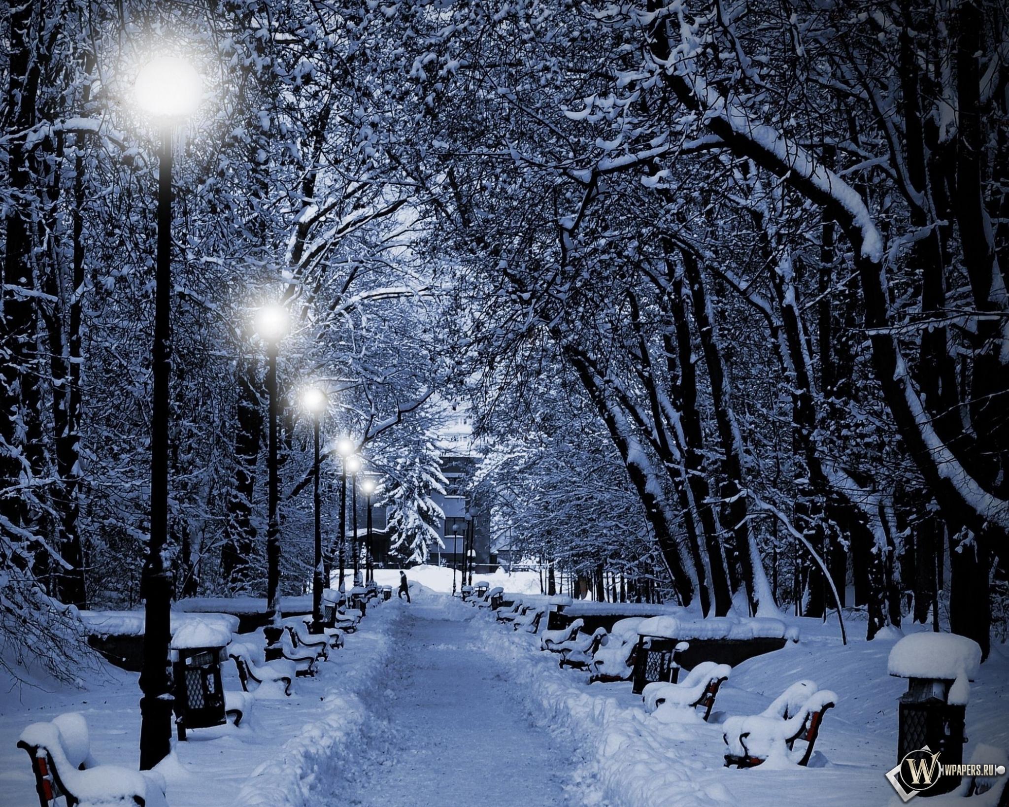 Аллея зимой 2048x1638