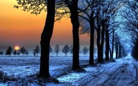 Обои Зимняя аллея на закате: Свет, Снег, Деревья, Солнце, Закат, Аллея, Синий, Зима
