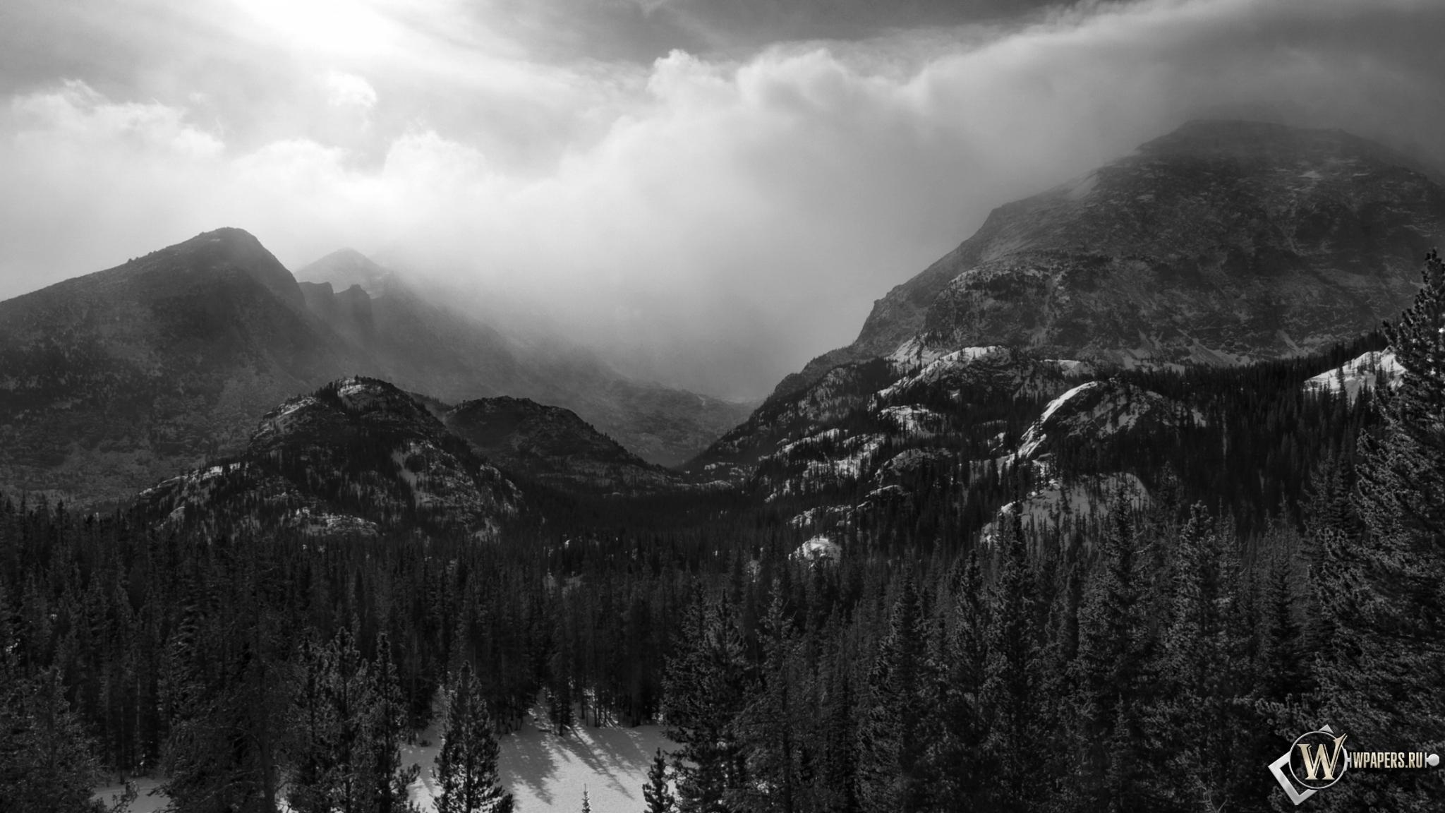 Зимний лес на горах на рабочий стол с