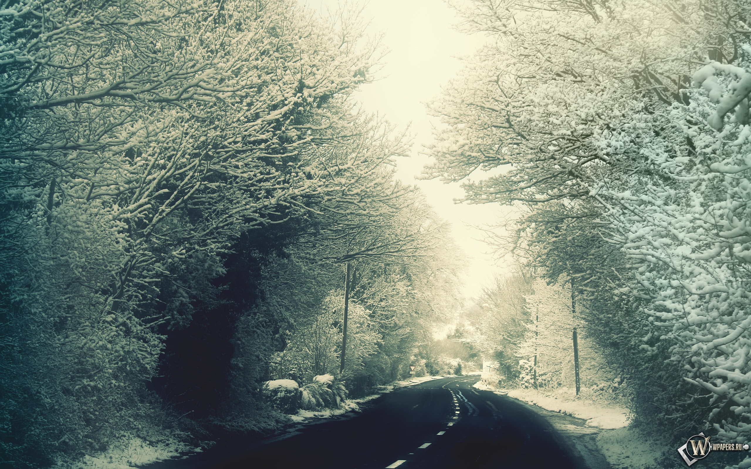 Зимняя дорога 2560x1600