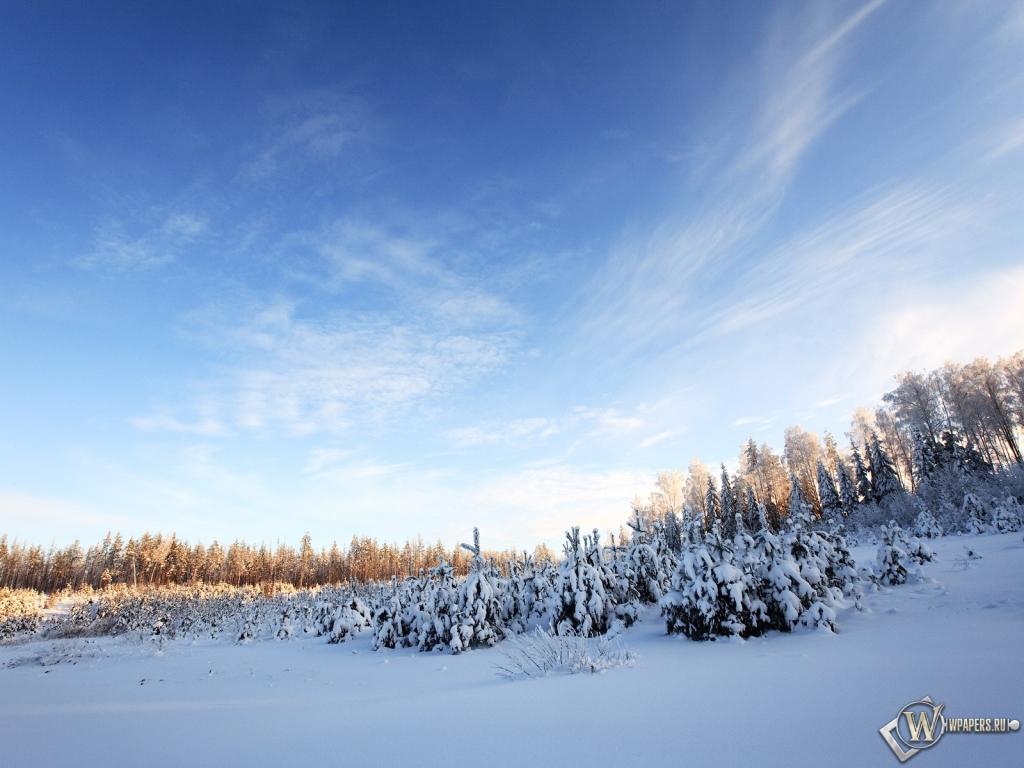 Обои зимнее небо на рабочий стол с