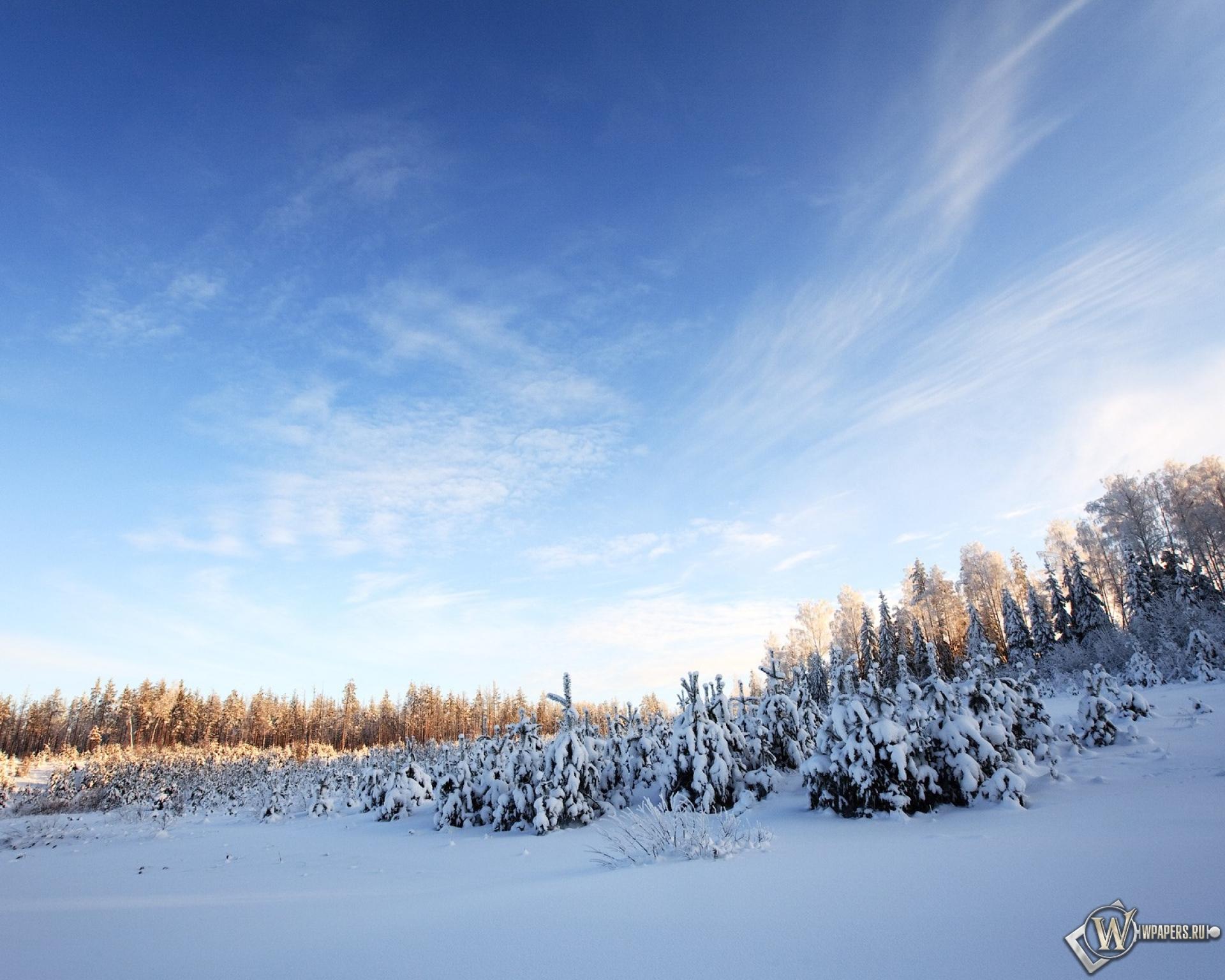 Картинки зима природа