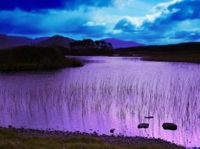 Обои Фиолетовое озеро: Озеро, Берег, Небо, Цвет, Вода и небо