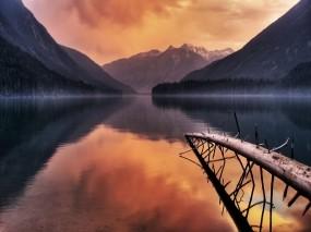 Обои Восход на озере: Озеро, Дерево, Ветки, Вода и небо
