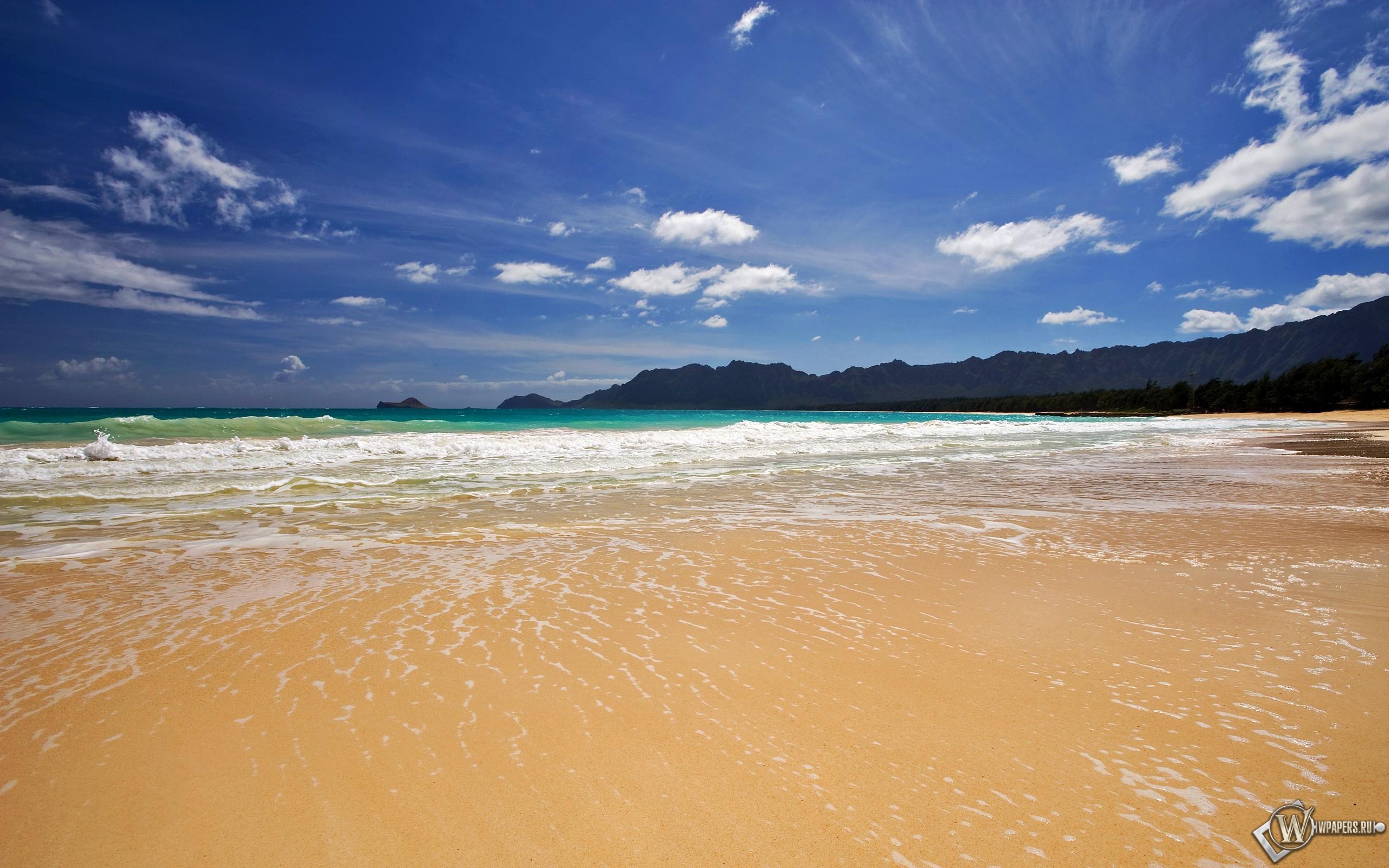 Песчанный берег 2560x1600