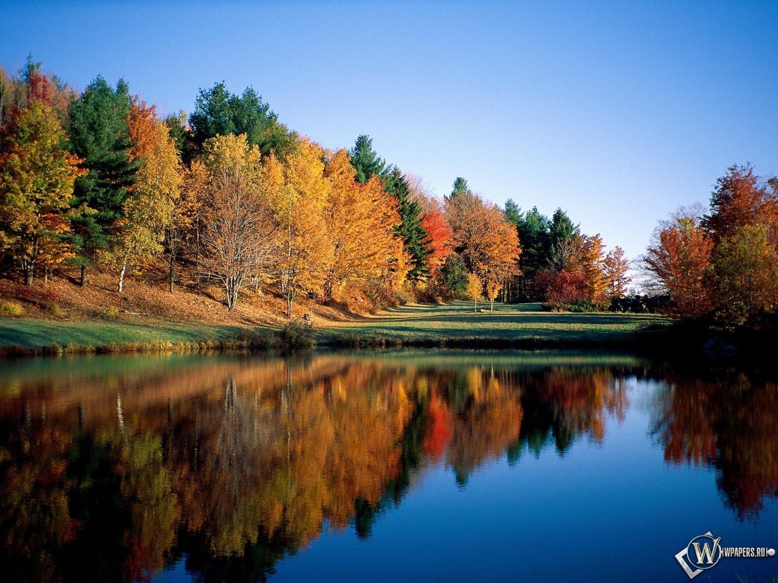 Отражение леса в речной глади 1600x1200