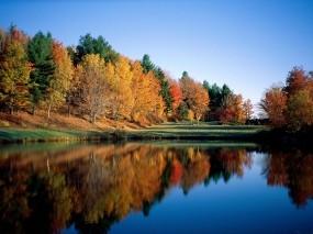 Обои Отражение леса в речной глади: Река, Отражение, Лес, Небо, Отражение в воде, Вода и небо